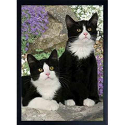 CAT FRIDGE MAGNET in 3D (black & white)